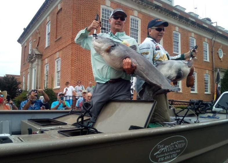 catfish, tournament, WCC, Savannah, Tennessee, blue cats, flatheads, fish care, skipjack