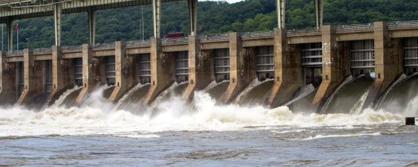 Tennessee River, Wilson Lake, Wheeler Lake, Alabama, TVA catfish, bule cat, flathead, channel cat