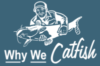 Why We Catfish White Home Page Logos