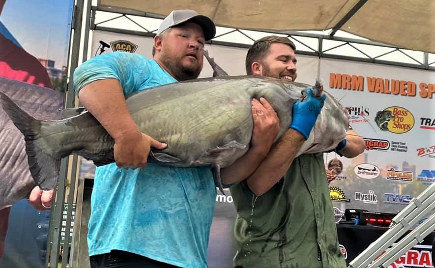 catfish, tournament, Mississippi River Monsters, MRM, Memphis, Tennessee, Mississippi River, Big Muddy, bumping, anchoring, current, skipjack, George Young Jr., Bill Dance