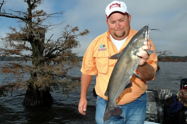 Billy Blakley, a guide for Blue Bank Resort, admires a catfish he caught while fishing around cypress trees at Reelfoot Lake, Tennessee.