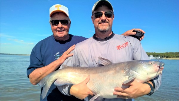 B'n'M Poles President, Jack Wells, caught this nice blue while engaged in some research and development on catfish poles. He was assisted by Bill Dance on his home waters of the Mississippi River.