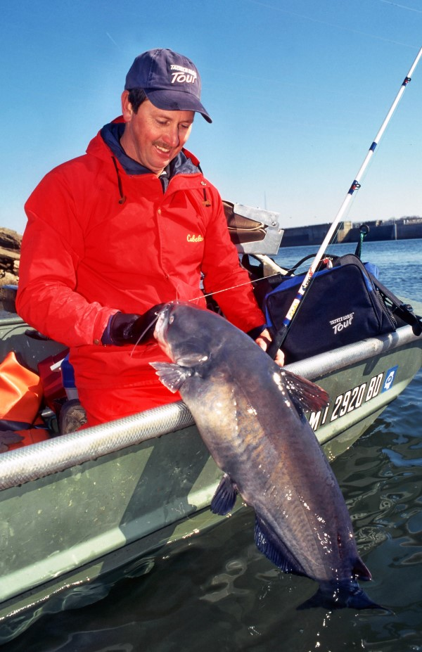 Phil King uses time proven strategies to fish for cats on drop-offs.