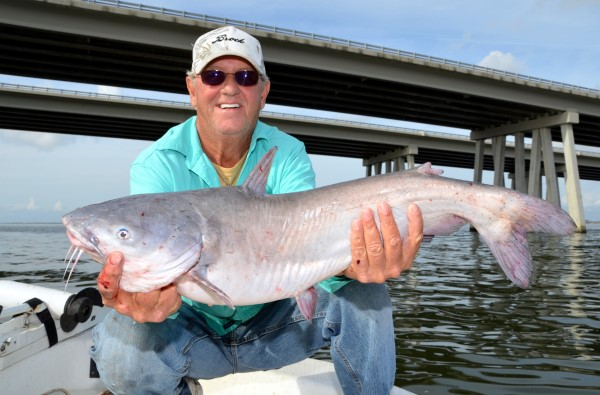 Capt. Kenny Kreeger shows off a blue catfish he caught while fishing by the Interstate 10 Twin Spans crossing Lake Pontchartrain near Slidell, LA.