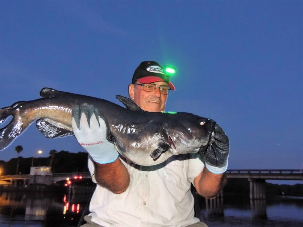 Fishing at night is cooler and there are fewer boats on the water. Your reward can be a nice St. Johns River channel cat.