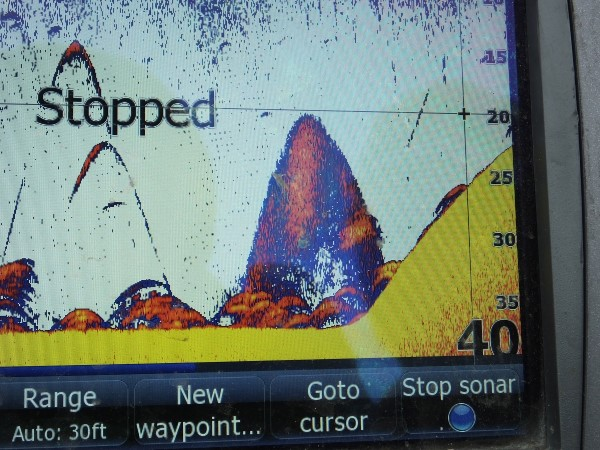 Manning uses his graph to find a combination of forage and fish along underwater contour changes.