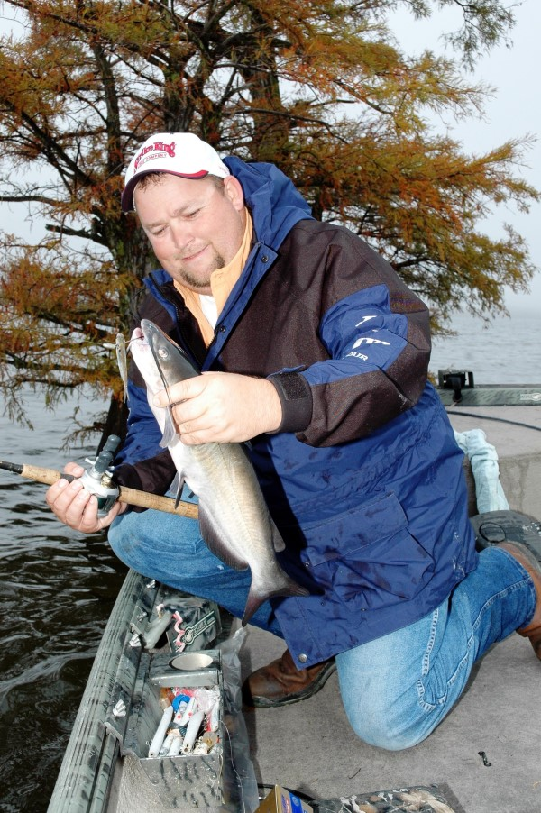 Billy Blakley, a guide for Blue Bank Resort, shows off a channel catfish he caught while flipping bait around cypress trees on Reelfoot Lake, TN. (Photo by John N. Felsher)