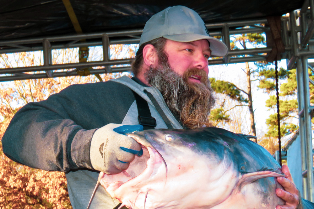 Justin Neese and his cousin, Jase Gore, are shown holding Justin's personal best 107-pound blue cat back in 2017. The big cat is definitely one of the Missouri River's old-timers.