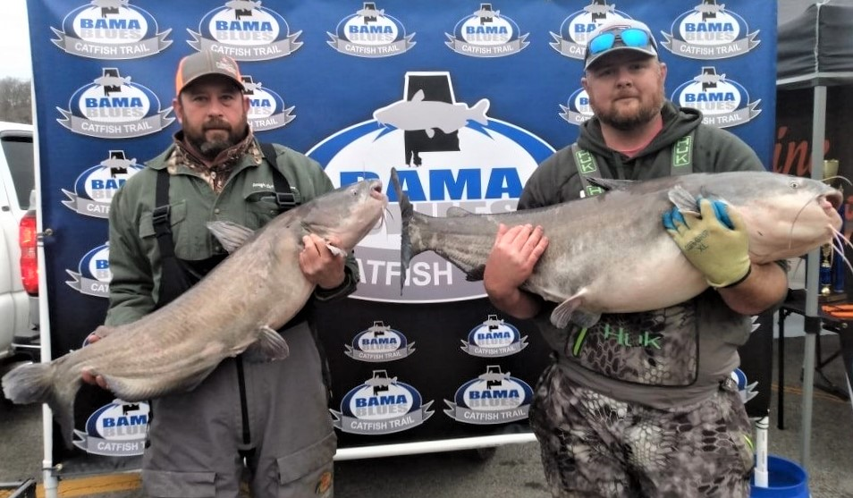 catfish, tournament, Bama Blues, blue cat, flathead, Wheeler Lake, Donnie Fountain, Lonnie Fountain, Chad Mayfield, Jason Frost, Doug Walker, Jack Woodall, Cory Ramsey, Chris Ramsey, Rogersville, Alabama
